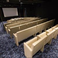 Sala cinema della Viking Star