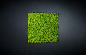 Lichene, Pannello modulare per parete vegetale